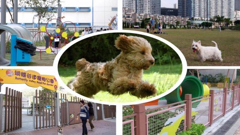 狗仔有福了!盤點5個特色狗公園